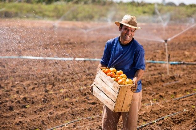 O agricultor Geraldo da Cruz, que há vinte anos produz frutas e legumes no Jaíba, diz que os investimentos ajudaram a economizar água e luz