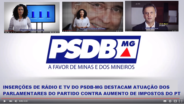BANNER INSERCOES PSDB-MG